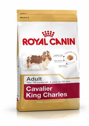 Корм для собак Royal Canin CAVALIER KING CHARLES ADULT 500 г.
