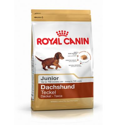 Корм для собак Royal Canin DACHSHUND JUNIOR 500 г.