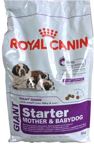 Корм royal canin starter mother у babydog